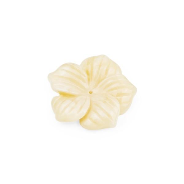 Bernstein (natur), honigfarben, Blüte, fünfblättrig, Ø 22-23mm