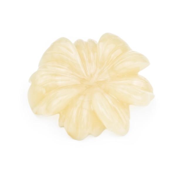 Bernstein (natur), honigfarben, Blüte, siebenblättrig, Ø 31-32mm